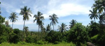 Land for Sale in Pamenang Lombok with Gili Trawangan Island View