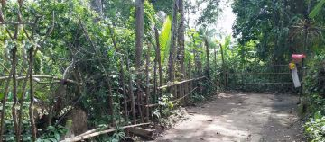 Land for Sale in Ubud Bali Located at Lodtunduh suitable for Villas or Investment