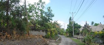 Land for Long Term Lease in Pererenan near Canggu Bali Indonesia